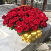 101 Роза местная по Акции  50 см