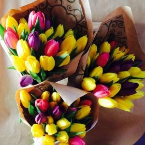 Тюльпаны Голландские 15 штук