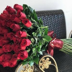 51 Роза Метровая