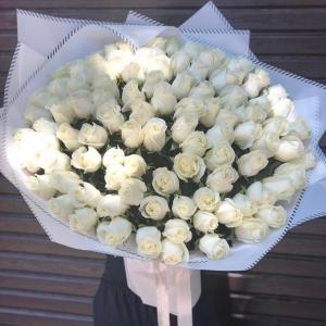 101 Голландская Роза 80 см